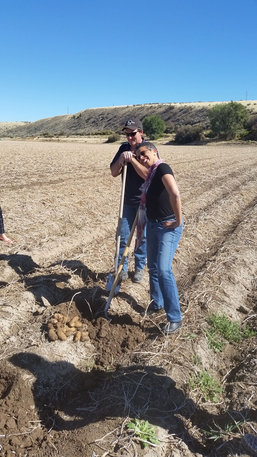 Jackie digging spuds with potato farmer James Hoff, Idaho Falls 2015
